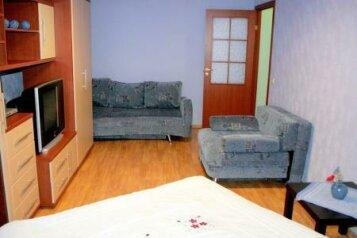 1-комн. квартира, 50 кв.м. на 5 человек, Авиационная улица, 48А, Чкаловский район, Екатеринбург - Фотография 1