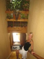 Мини-отель, красный ключ на 5 номеров - Фотография 3