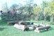 Дом, 75 кв.м. на 8 человек, 3 спальни, д.Плотихино, район Северный, Сергиев Посад - Фотография 5