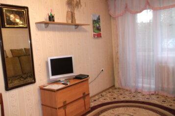 1-комн. квартира, 30 кв.м. на 2 человека, проспект Дружбы, 56, Центральный район, Новокузнецк - Фотография 3