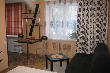 1-комн. квартира, 26 кв.м. на 4 человека, проспект Ленина, 17, Петрозаводск - Фотография 3