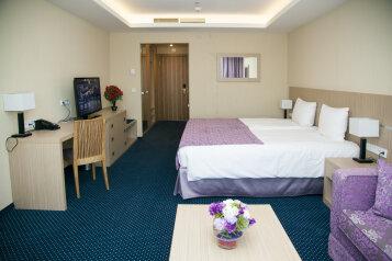 Delux:  Номер, Стандарт, 3-местный (2 основных + 1 доп), 1-комнатный, Отель, Борисовское шоссе на 79 номеров - Фотография 3