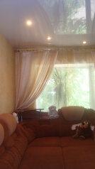 1-комн. квартира, 32 кв.м. на 3 человека, шимановского, 23, Благовещенск - Фотография 1