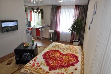 1-комн. квартира на 2 человека, Красноармейская улица, 43, Бийск - Фотография 3