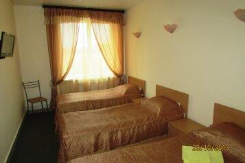 Стандарт С:  Номер, Стандарт, 3-местный, 1-комнатный, Загородный отель, Тюменский тракт на 26 номеров - Фотография 3
