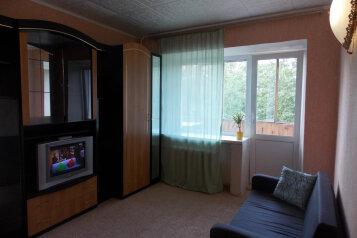 1-комн. квартира, 33 кв.м. на 4 человека, Восточная улица, 62, Кировский район, Екатеринбург - Фотография 3