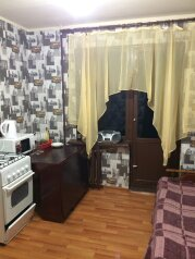 1-комн. квартира на 2 человека, Воткинское шоссе, 116, Индустриальный район, Ижевск - Фотография 4