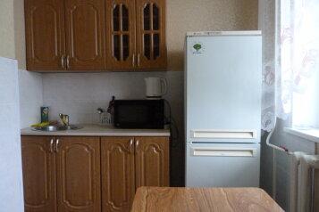 1-комн. квартира, 45 кв.м. на 3 человека, улица Радищева, 143к1, Ленинский район, Ульяновск - Фотография 1