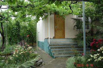 """Мини-отель """"Виноградный рай"""", Виноградная улица, 55 на 5 номеров - Фотография 1"""