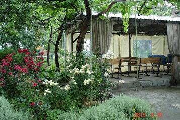 Мини-пансионат, Виноградная улица на 5 номеров - Фотография 3