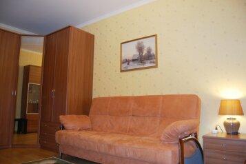 1-комн. квартира, 50 кв.м. на 4 человека, улица Белинского, Горьковская, Нижний Новгород - Фотография 3