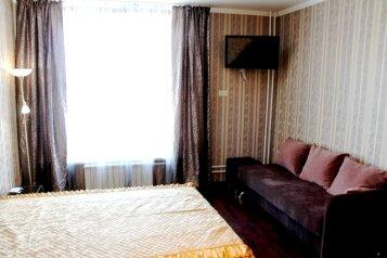 1-комн. квартира, 47 кв.м. на 3 человека, улица Ситникова, Балашиха - Фотография 4