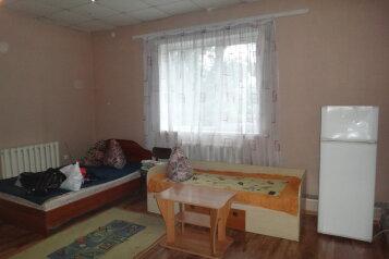 1-комн. квартира, 35 кв.м. на 3 человека, улица Петра Мерлина, 38, Бийск - Фотография 1