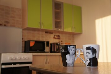1-комн. квартира, 45 кв.м. на 4 человека, Байкальская улица, Октябрьский округ, Иркутск - Фотография 1