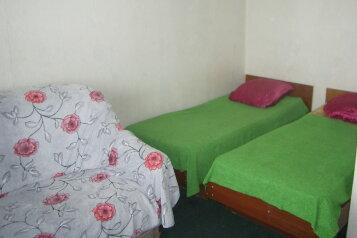 1-комн. квартира, 30 кв.м. на 4 человека, Калинина, 129, Благовещенск - Фотография 3