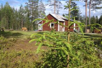 Лесной дом, 52 кв.м. на 6 человек, 2 спальни, Шуясалми, Петрозаводск - Фотография 1