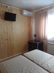 Эконом:  Номер, Эконом, 2-местный, 1-комнатный, Мини-отель, улица Кирова, 109 на 15 номеров - Фотография 2