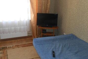 1-комн. квартира, 45 кв.м. на 3 человека, Техническая улица, 8, Псков - Фотография 3