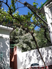 Сдаю дом   под   ключ, 45 кв.м. на 6 человек, 2 спальни, Таврическая улица, Алушта - Фотография 1