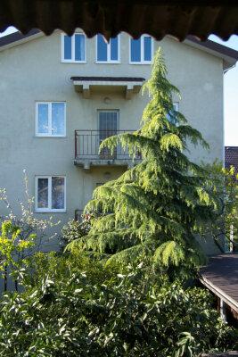 Коттедж, 50 кв.м. на 50 человек, 2 спальни, улица Гоголя, 11, Адлер - Фотография 1
