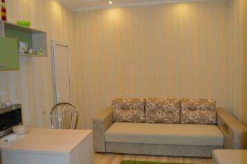 1-комн. квартира, 19 кв.м. на 2 человека, улица Челюскинцев, Центральный округ, Курск - Фотография 4