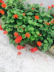 Гостевой дом, ул Октябрьская, 288 на 8 номеров - Фотография 2
