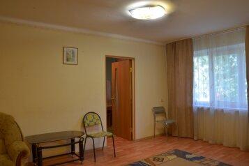 2-комн. квартира, 45 кв.м. на 4 человека, улица Тимирязева, 52, Свердловский район, Пермь - Фотография 3