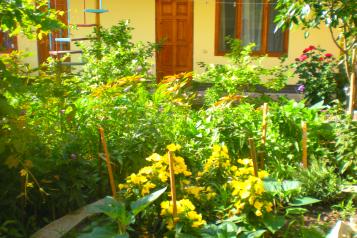 Гостевой дом с завтраком , Можжевеловая на 5 номеров - Фотография 2
