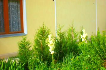 Гостевой дом с завтраком , Можжевеловая на 5 номеров - Фотография 4
