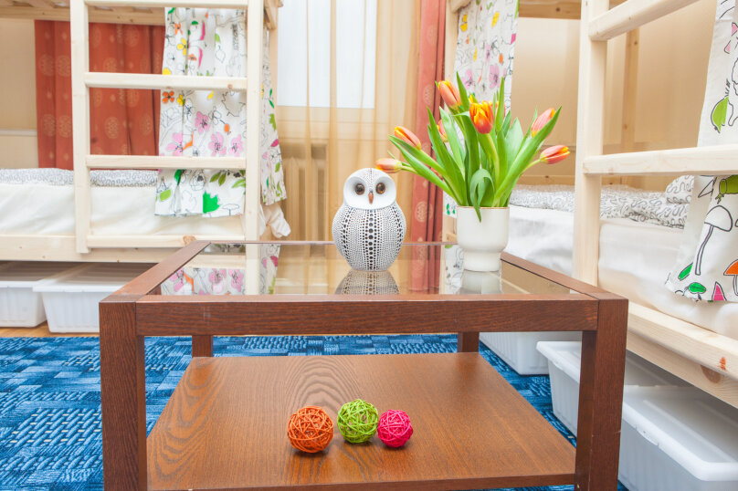 Кровать в общем женском номере с 10 кроватями, 1-я Тверская-Ямская улица, 36с1, метро Белорусская, Москва - Фотография 2