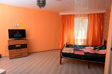 1-комн. квартира, 43 кв.м. на 3 человека, Шишкова, Воронеж - Фотография 2