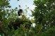 Пансионат, Курортная улица, 4/4 на 6 номеров - Фотография 51