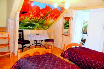 Гостевой дом, поселок Сатис. ул. Гоголя на 8 номеров - Фотография 2