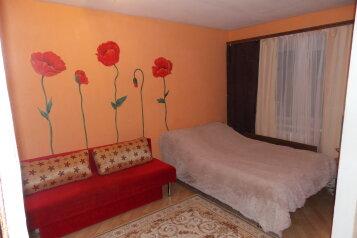 1-комн. квартира, 35 кв.м. на 3 человека, Новозыбковский переулок, 7, Брянск - Фотография 1