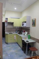 1-комн. квартира, 18 кв.м. на 3 человека, Еловая улица, 62, Чебаркуль - Фотография 2