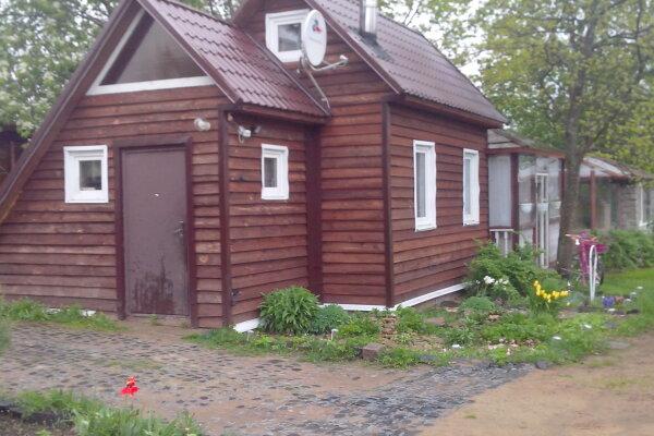 Дом В Кавголово, 45 кв.м. на 4 человека, 2 спальни