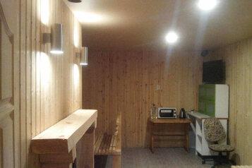 Домик с камином , 55 кв.м. на 8 человек, 1 спальня, Рябиновая улица, Пенза - Фотография 3