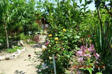 Сад, Громовский переулок на 4 номера - Фотография 3