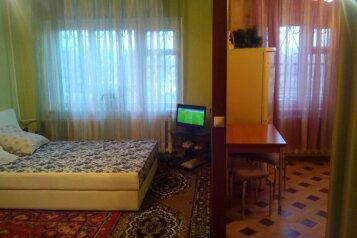 1-комн. квартира, 32 кв.м. на 3 человека, улица Розы Люксембург, 271, Иркутск - Фотография 3