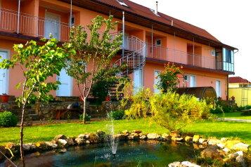 Мини-отель, Виноградная, 25 на 12 номеров - Фотография 1