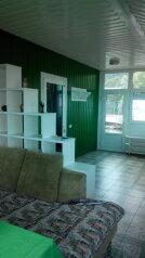 Комфортабельный видовой номер, 50 кв.м. на 4 человека, 1 спальня, шоссе свободы, 15 б, Алупка - Фотография 3