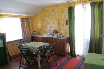 Две квартирки-студии в частном  секторе, улица Просмушкиных, 47 на 2 номера - Фотография 1