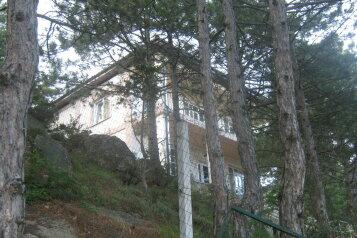 Гостевой дом, улица Петровского на 3 номера - Фотография 4