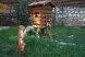 Гостевой дом в Окуневке, Окуневка, ул. Набережная на 19 номеров - Фотография 6