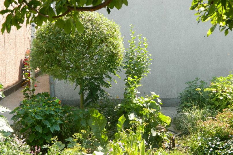 Райский уголок, Молочный переулок, 12 на 6 номеров - Фотография 3
