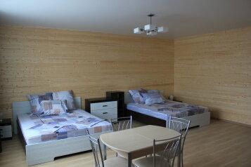 Дом студия, 36 кв.м. на 5 человек, 1 спальня, Пионерский переулок, Должанская - Фотография 2