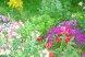 """Гостевой дом """"На Сухумском шоссе"""", Сухумское шоссе, 3-тий тупик на 6 комнат - Фотография 10"""