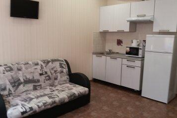 1-комн. квартира, 28 кв.м. на 2 человека, Сухумское шоссе, Хоста - Фотография 2