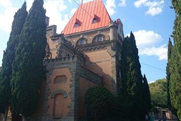 Мини-отель, Княгини Гагариной на 6 номеров - Фотография 3