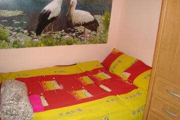 Частный дом, Щепкина , 16\2 на 3 номера - Фотография 1